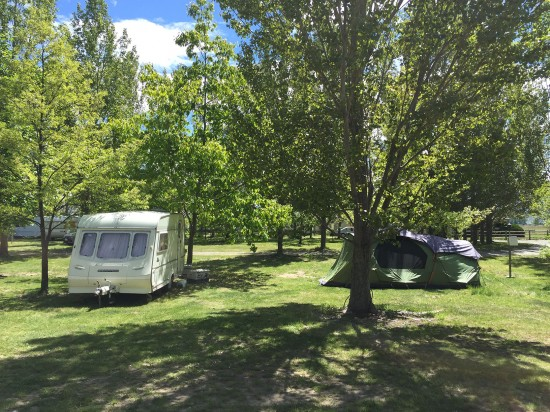 Nice campsite. Perhaps we should do some planting at Matamata?